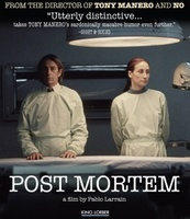 Post Mortem movie poster (2010) picture MOV_5d19659e