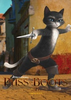 Puss in Boots movie poster (2011) picture MOV_11edfaad