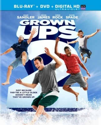Grown Ups 2 movie poster (2013) poster MOV_5dc70c83