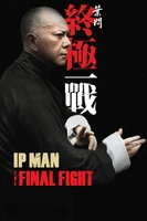 Ip Man: The Final Fight movie poster (2013) picture MOV_5e826e99