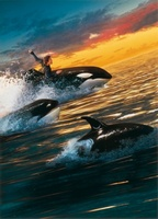 Free Willy 2: The Adventure Home movie poster (1995) picture MOV_60d67e9d