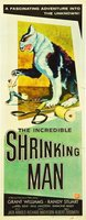 The Incredible Shrinking Man movie poster (1957) picture MOV_b8a2ea04