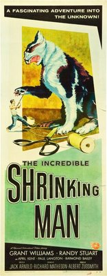 The Incredible Shrinking Man movie poster (1957) poster MOV_61fe9df8