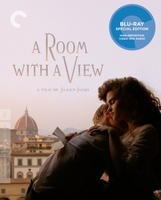 A Room with a View movie poster (1985) picture MOV_65b72749