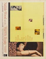 Splendor in the Grass movie poster (1961) picture MOV_6712d7b3