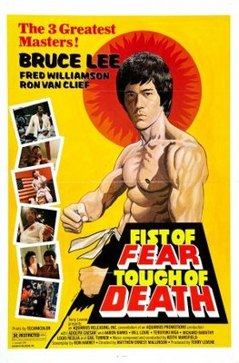 Fist of Fear, Touch of Death movie poster (1980) poster MOV_6a6617fc