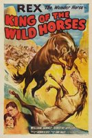 King of the Wild Horses movie poster (1933) picture MOV_6e2cf693