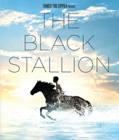 The Black Stallion movie poster (1979) picture MOV_6e4983cb