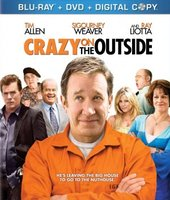 Crazy on the Outside movie poster (2010) picture MOV_7138438a