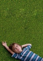 Boyhood movie poster (2013) picture MOV_73b48dfb