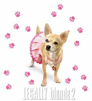 Legally Blonde 2: Red, White & Blonde movie poster (2003) picture MOV_7466a98b