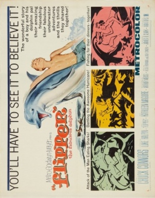 Flipper movie poster (1963) poster MOV_769dcd0b
