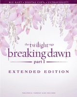 The Twilight Saga: Breaking Dawn - Part 1 movie poster (2011) picture MOV_785b6af7