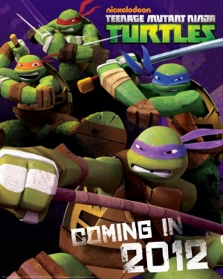 Teenage Mutant Ninja Turtles movie poster (2012) poster MOV_7981d746