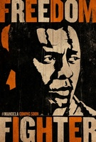 Mandela: Long Walk to Freedom movie poster (2013) picture MOV_7ad44e1c