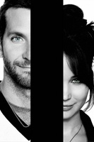 Silver Linings Playbook movie poster (2012) picture MOV_7f270a14