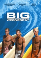 Big Wednesday movie poster (1978) picture MOV_7f567fb0