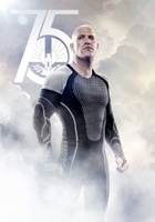 The Hunger Games: Catching Fire movie poster (2013) picture MOV_7fba01be