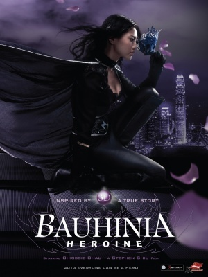 Bauhinia Heroine movie poster (2013) poster MOV_80b7e223