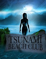 Tsunami Beach Club movie poster (2008) picture MOV_814a8526
