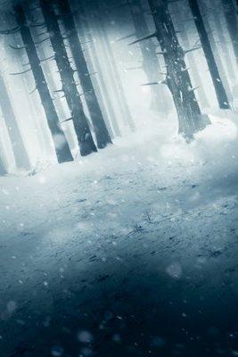 Red Riding Hood movie poster (2011) poster MOV_876f9af3