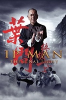 Ip Man: The Final Fight movie poster (2013) picture MOV_87df4d1f