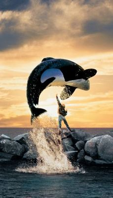 Free Willy movie poster (1993) poster MOV_8922ba6b