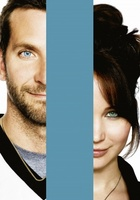 Silver Linings Playbook movie poster (2012) picture MOV_8a85cdfa