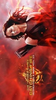 The Hunger Games: Catching Fire movie poster (2013) picture MOV_8afff752