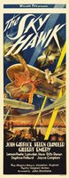 The Sky Hawk movie poster (1929) picture MOV_8bc0d073