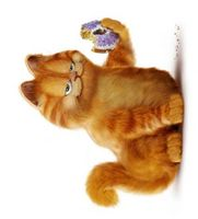 Garfield movie poster (2004) picture MOV_8d3a08f6