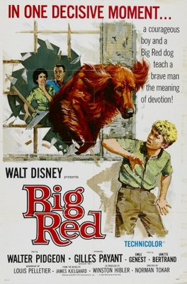 Big Red movie poster (1962) poster MOV_8d6fabf5