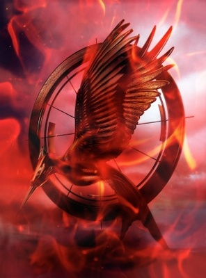 The Hunger Games: Catching Fire movie poster (2013) poster MOV_90022fa1
