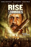 Rise of the Zombies movie poster (2012) picture MOV_91c22017