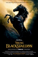 The Young Black Stallion movie poster (2003) picture MOV_91ebef25