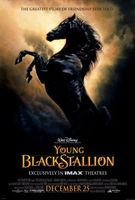 The Young Black Stallion movie poster (2003) picture MOV_92451ecb