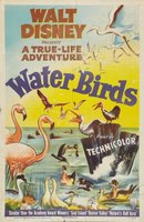 Water Birds movie poster (1952) picture MOV_9271badc