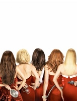 Desperate Housewives movie poster (2004) picture MOV_948a7550