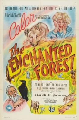The Enchanted Forest movie poster (1945) poster MOV_9646f95c