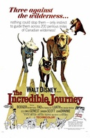 The Incredible Journey movie poster (1963) picture MOV_96f4157f