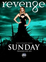 Revenge movie poster (2011) picture MOV_9769cd04