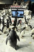 Mr. Popper's Penguins movie poster (2011) picture MOV_97c8ea2b