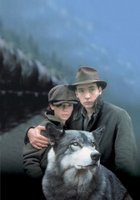 The Journey of Natty Gann movie poster (1985) picture MOV_9e5c47ca
