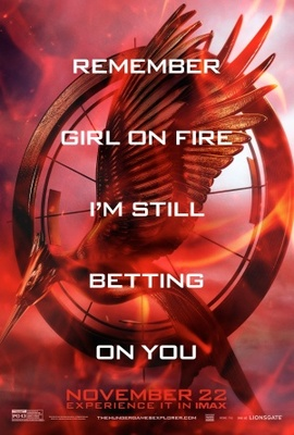 The Hunger Games: Catching Fire movie poster (2013) poster MOV_a12ef67c
