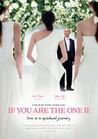 If You Are the One 2 movie poster (2010) picture MOV_a175ccea