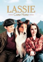 Lassie Come Home movie poster (1943) picture MOV_a2100178