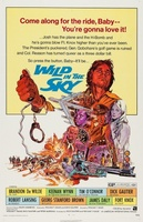 Wild in the Sky movie poster (1972) picture MOV_a952e664