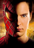 Spider-Man 2 movie poster (2004) picture MOV_a65ab5a2