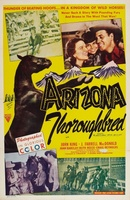 The Gentleman from Arizona movie poster (1939) picture MOV_a898c92d