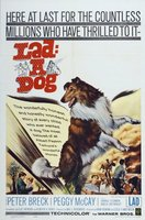 Lad: A Dog movie poster (1962) picture MOV_a8f3de78